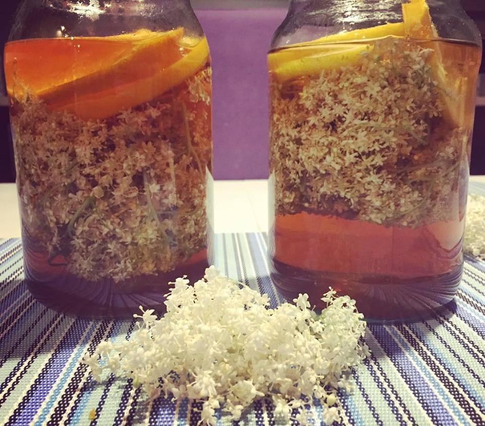 Dieta Thermomiksowa – sok z czarnego bzu